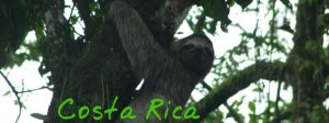 Final Costa Rica