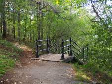 Mont Royal Staircase