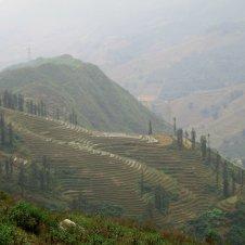 Sapa Fields