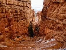 Bryce Switchback